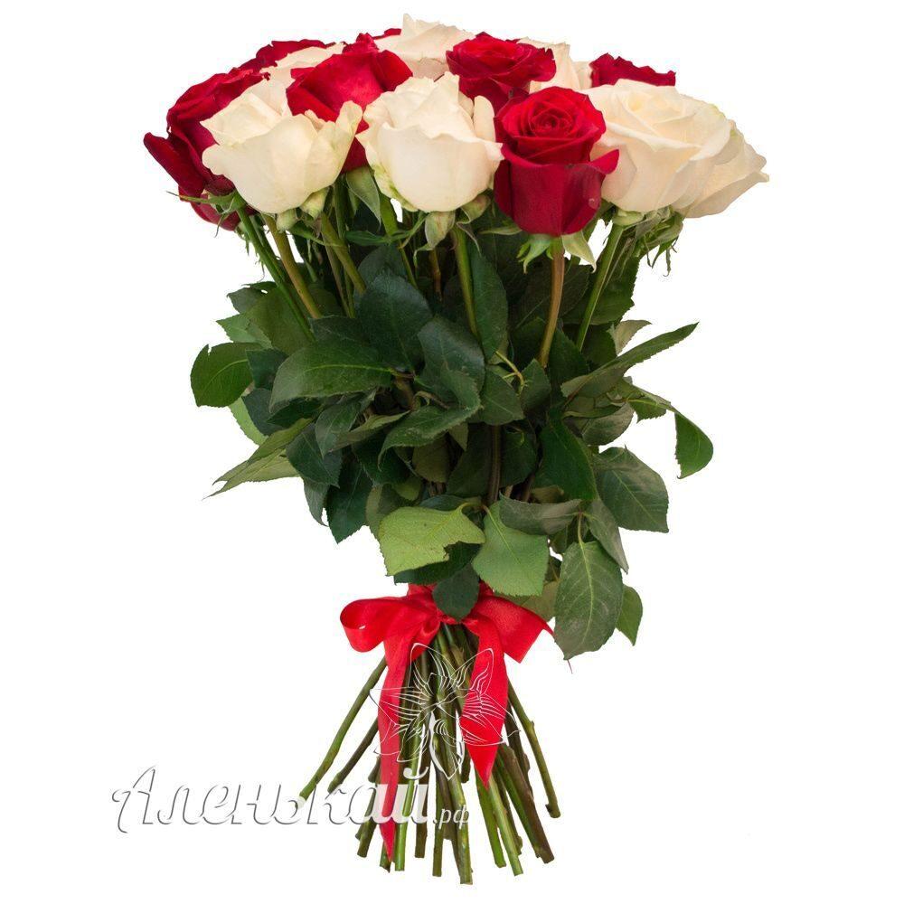 Купить не дорого розы в пятигорске черные розы купить в орле