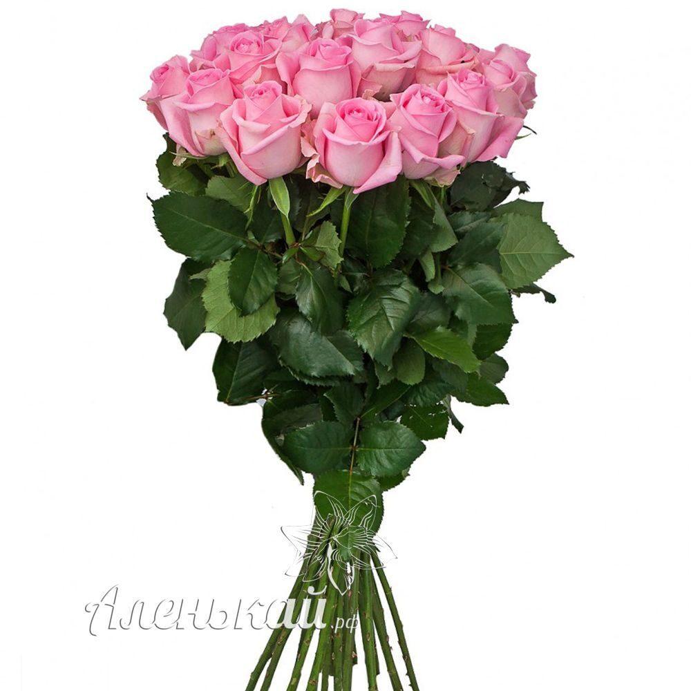 Доставка цветов пятигорск дешево круглосуточно необычный подарок мужчине в беларуси
