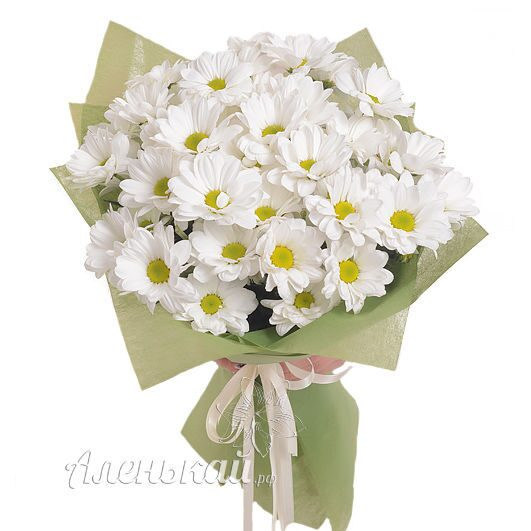 Доставка шаров цветов в пятигорске недорого цветы на заказ по всему миру